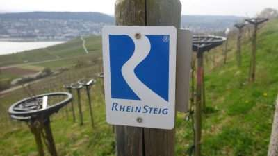 Castles and Vineyards of the Rhine Valley 40