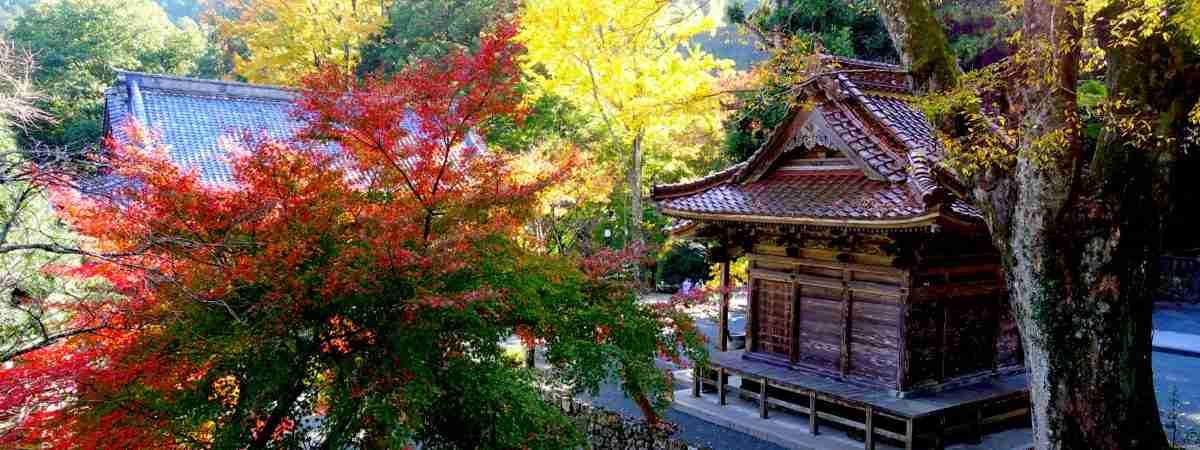 Shikoku Pilgrim Trail