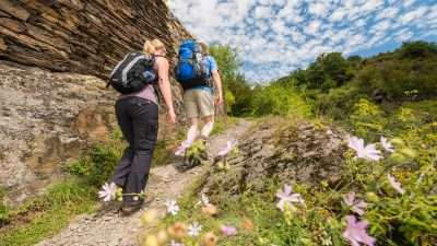 The Moselle Trail 10