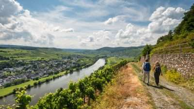The Moselle Trail 11