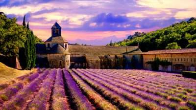 Classic Provence: Alpilles and Luberon