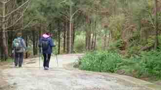 Camino Finisterre: Santiago to Muxia 24