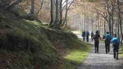 Camino Frances Stage 1: St Jean Pied de Port to Logroño 2