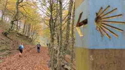 Camino Frances Stage 1: St Jean Pied de Port to Logroño 4