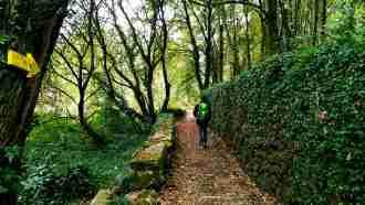 Easy Camino Portugues 13