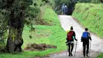 Easy Camino Portugues