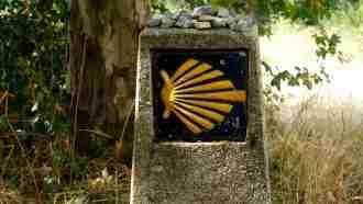 Full Camino Frances: St Jean Pied de Port to Santiago 22
