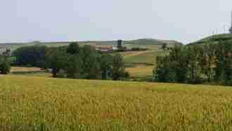 Full Camino Frances: St Jean Pied de Port to Santiago 28