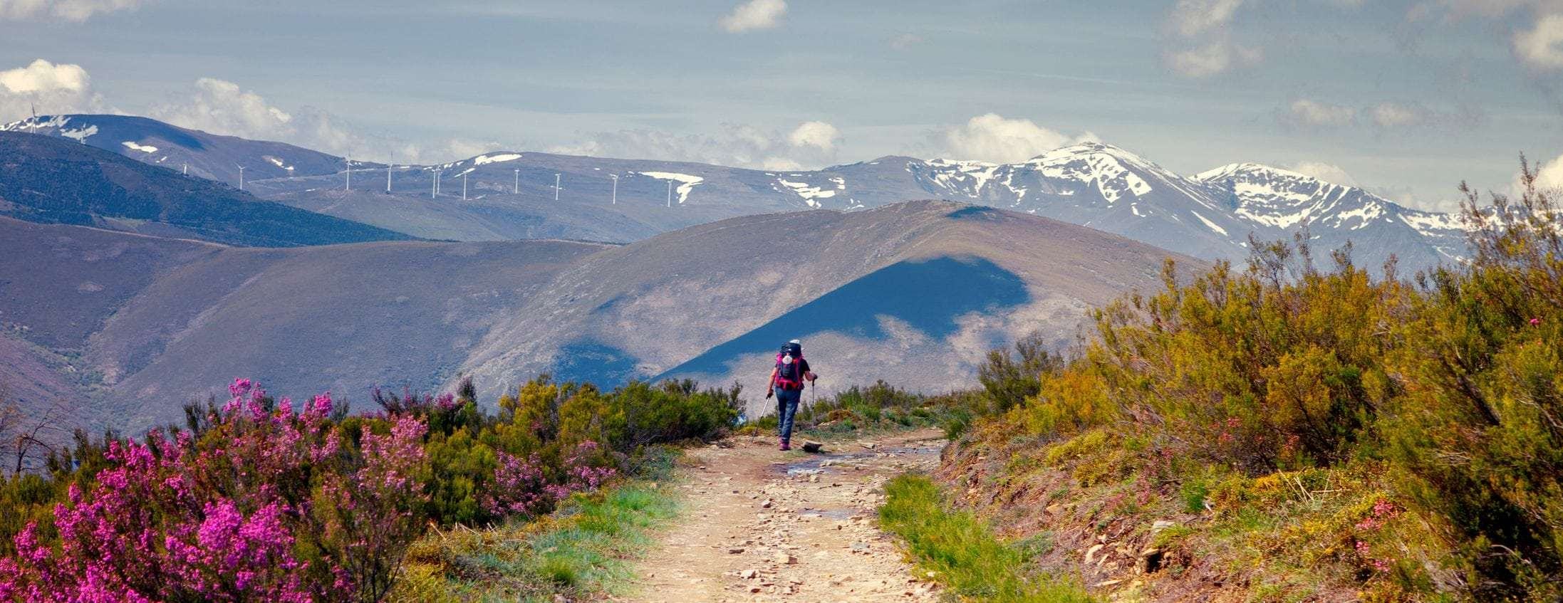 Full Camino Frances: St Jean Pied de Port to Santiago 29