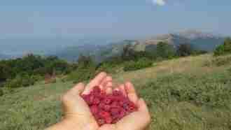 High Trails of Macedonia 16