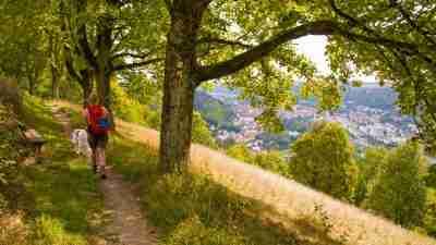 Altmühl Valley Panorama Trail 32
