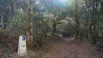 Camino Ingles: Ferrol to Santiago 19