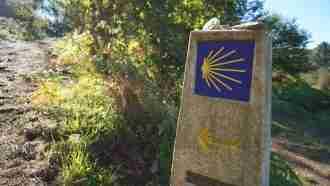 Camino Ingles: Ferrol to Santiago 4
