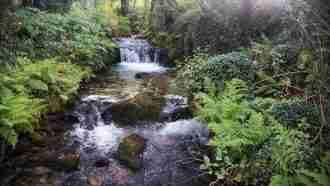 Camino Portugues: Variante Espiritual 3