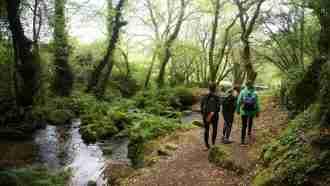 Camino Portugues: Variante Espiritual 5