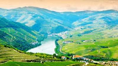 Porto & Douro Valley Wine Region 40