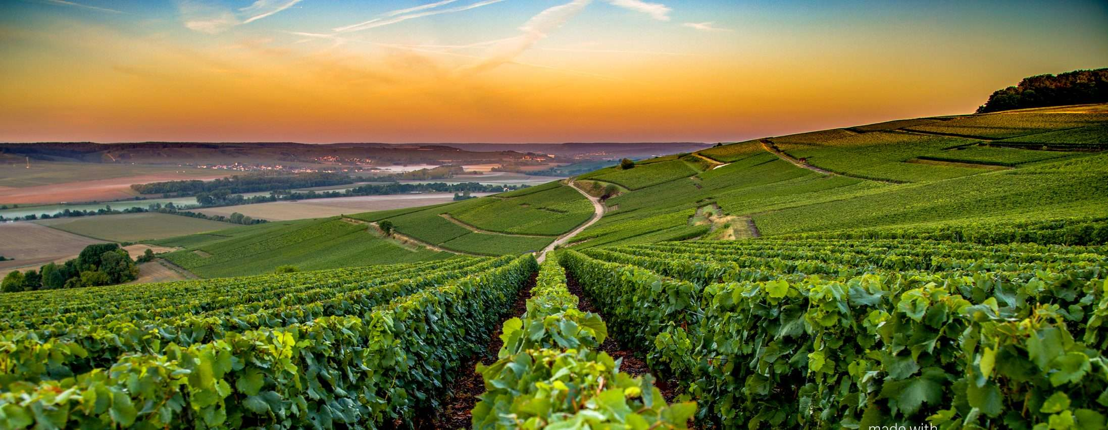 Via Francigena in France: Reims to Bar-sur-Aube