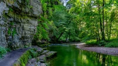 The Black Forest Gorge Trail