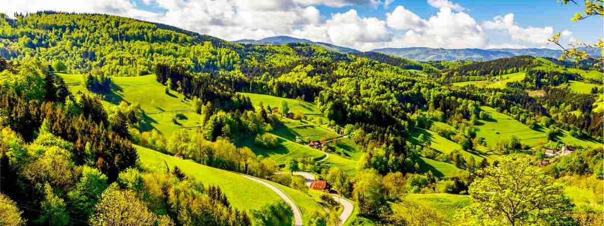 The Black Forest Traverse: Westweg Trail