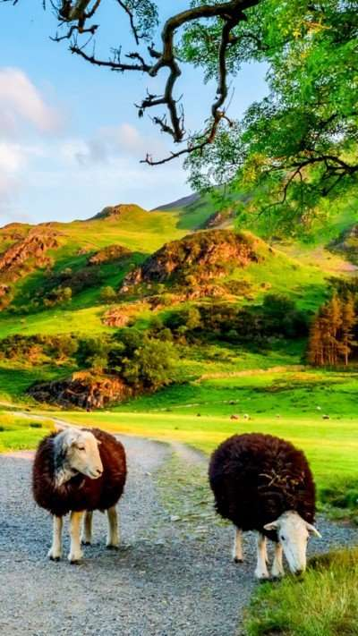 Lake District Highlights and Scafell Pike 29