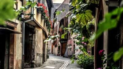 The Alsace Wine Route and Colmar 7