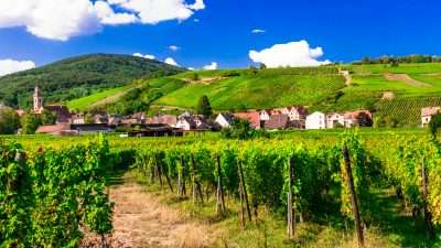 The Alsace Wine Route and Colmar