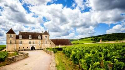 Wine Trails and Châteaux of Burgundy in Style