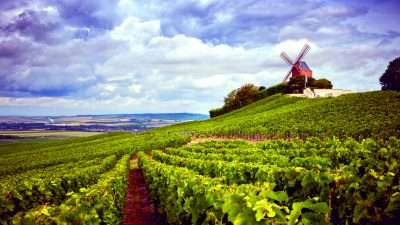 Wine Trails of Champagne 32