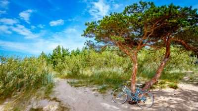 Cycling Along the Lithuanian Seaside 92