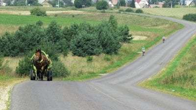 Cycling the Baltics: Estonia, Latvia and Lithuania (11 days, supported) 22