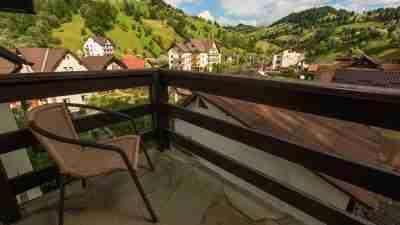 Transylvania and the Carpathian mountains 19