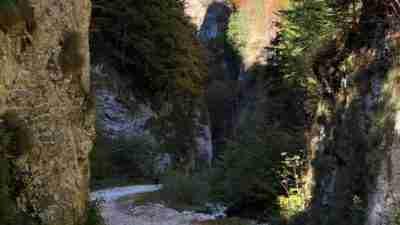 Transylvania and the Carpathian mountains 41