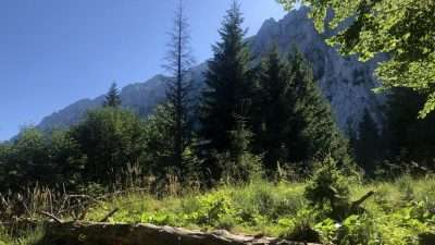 Transylvania and the Carpathian mountains 44