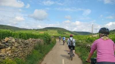 Cycling the Heart of Burgundy 38