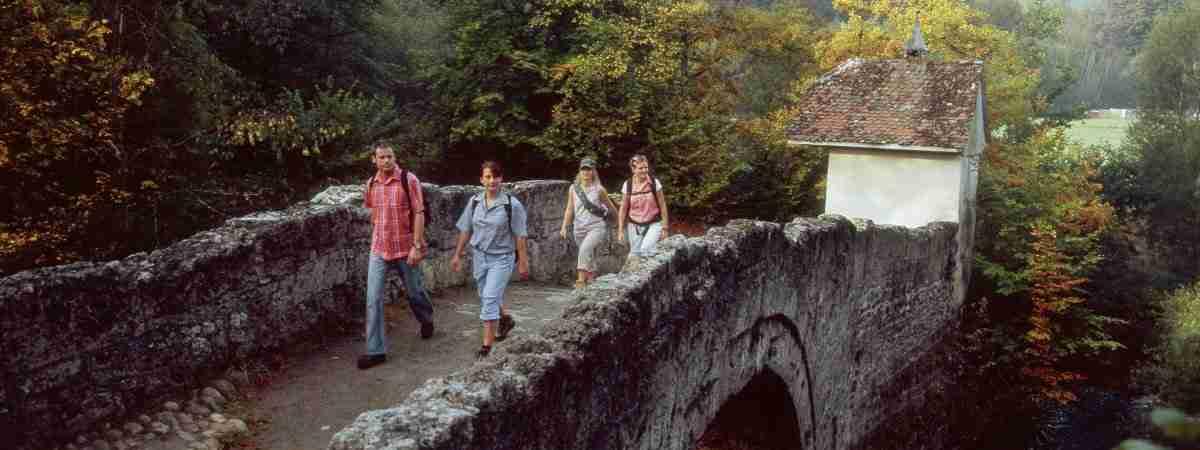 The Way of St James: Einsiedeln to Interlaken 2