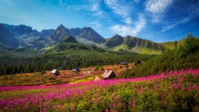 Zakopane, Babia Góra and Belianske Tatras 7