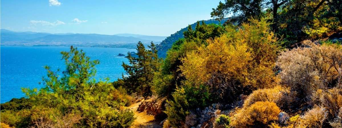 Walking in Cyprus: Troodos Mountains and Akamas